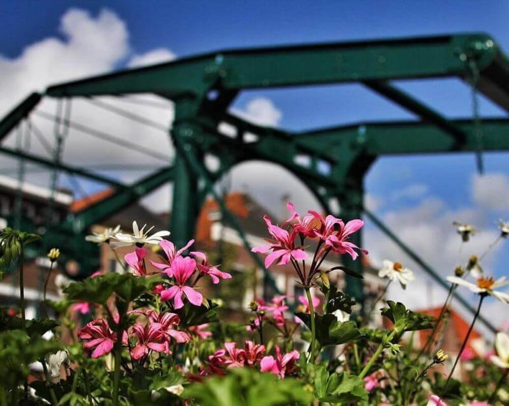 Brug met bloemen op de voorgrond